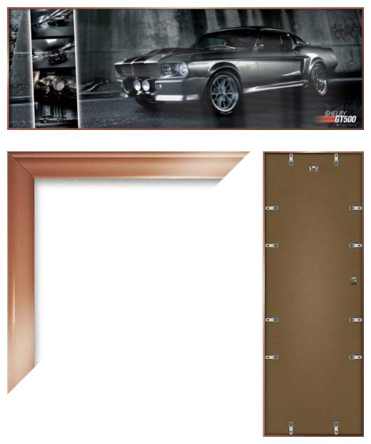 ford mustang shelby gt500 easton chang framed door